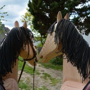 pferdemaehne