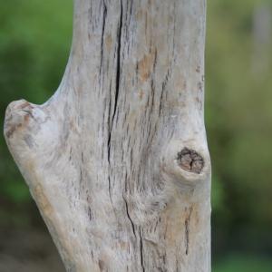stehleuchte-du-verdon-provence-detail-stamm