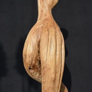 erosi-detail-2